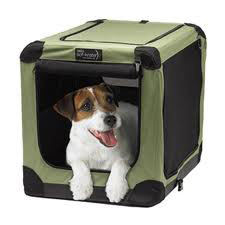 Dog in Sof Crate