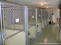 dog breeder kennels - interior