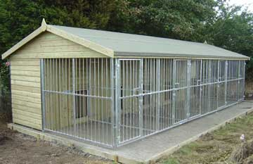 dog-kennel-outside